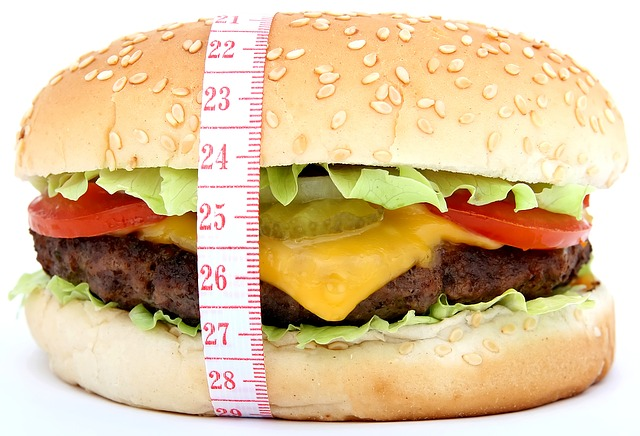 metr u hamburgeru
