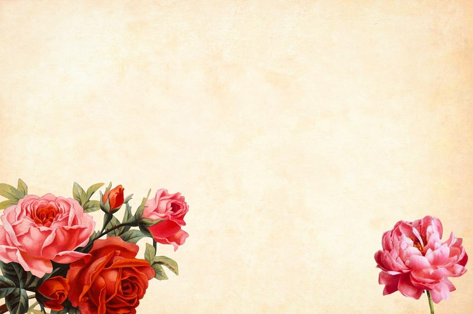 ruže,pozadie
